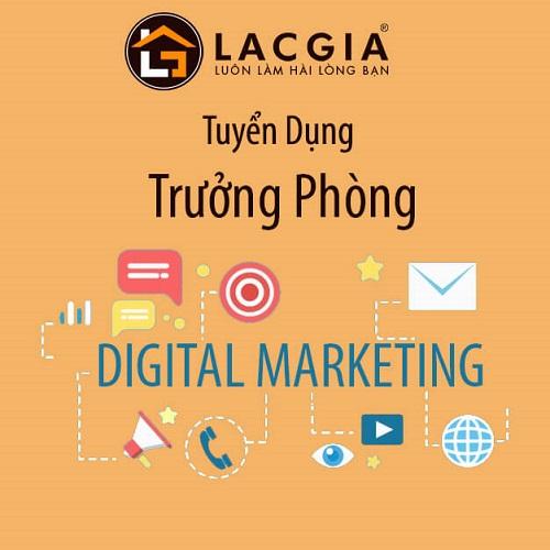 tuyen dung truong phong digital marketing 2 - TUYỂN DỤNG TRƯỞNG PHÒNG DIGITAL MARKETING