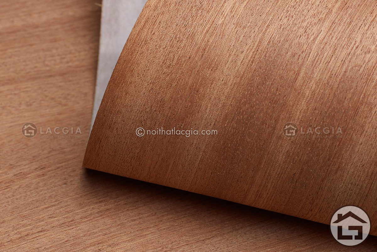 Veneer la go gi - Veneer là loại gỗ gì? Nên hay không nên sử dụng Veneer?